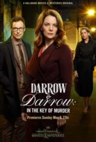 Darrow & Darrow 2 izle Türkçe Dublaj (2018)