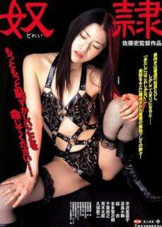 New Tokyo Decadence The Slave – İşkenceli Japon Sex Filmi İzle reklamsız izle